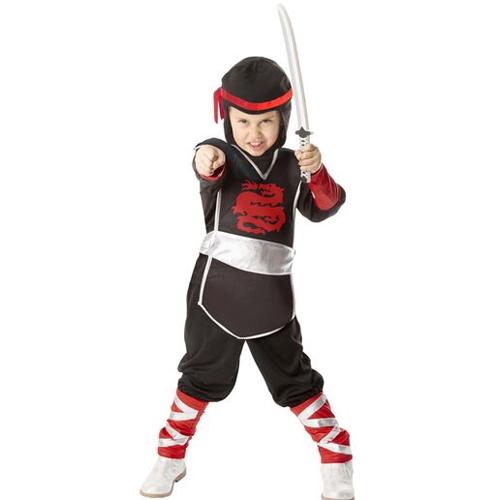 Masquerade Ninja Costume